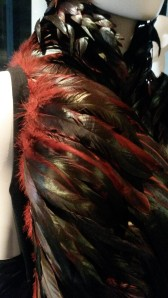 Use of rooster feather to elevate their status