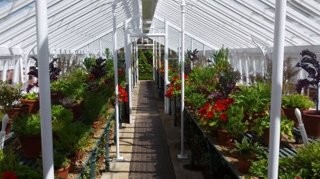 One of the glasshouses in the walled gardens.