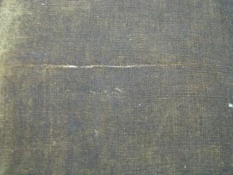 14. Detail of tear on o.310 BT