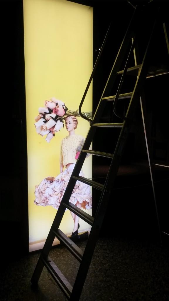 Showtime Girl who greets you on entering the exhibition with ladder!