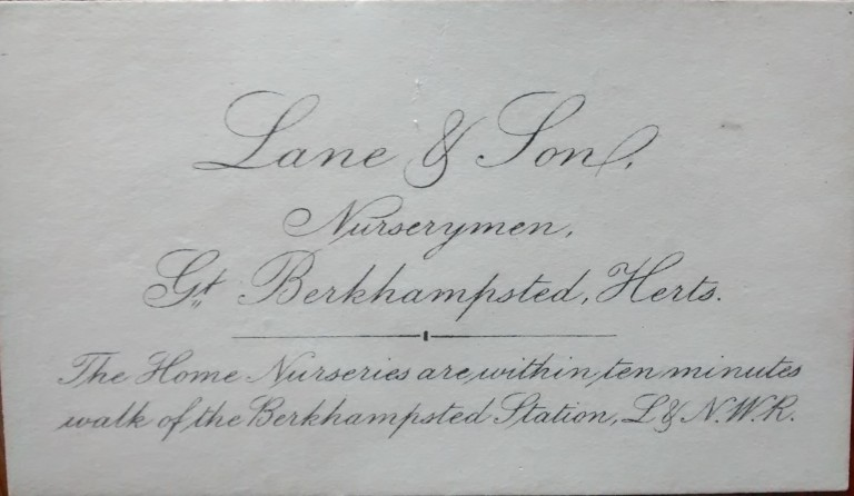 Business card of Lane & Sons, who sold the monkey puzzle to John and Joséphine in 1871, JB/6/3/3/8.